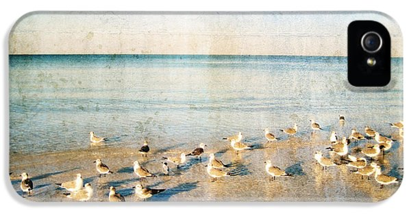 Beach Combers - Seagull Art By Sharon Cummings IPhone 5 / 5s Case by Sharon Cummings