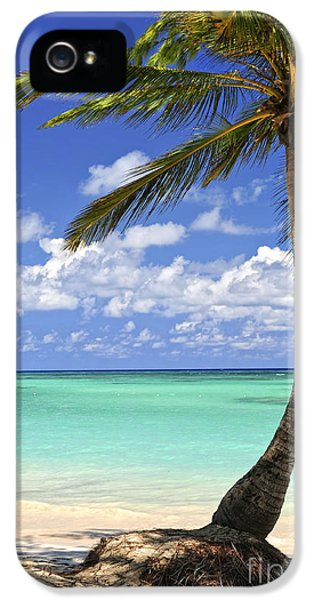 Romantic iPhone 5 Cases - Beach of a tropical island iPhone 5 Case by Elena Elisseeva