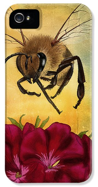 Bee iPhone 5 Cases - Bee I iPhone 5 Case by April Moen