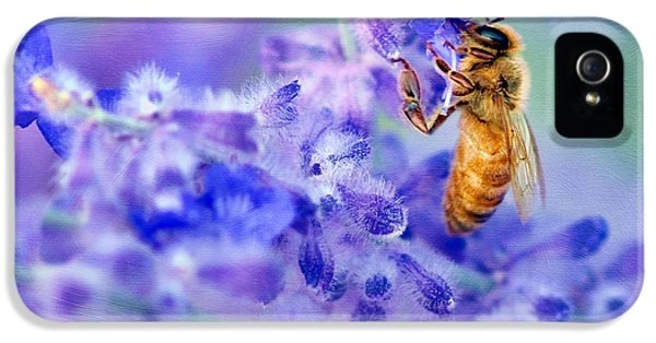 Tubular iPhone 5 Cases - Bee on Russian Sage #2 - Square Crop iPhone 5 Case by Nikolyn McDonald