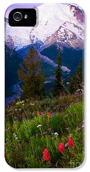 Before Dawn At Mount Rainier IPhone 5 / 5s Case by Inge Johnsson
