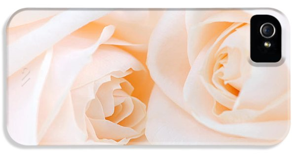 High Key iPhone 5 Cases - Beige roses iPhone 5 Case by Elena Elisseeva