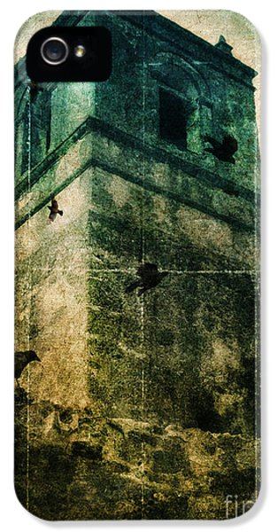 Circling iPhone 5 Cases - Bell Tower with Birds Circling iPhone 5 Case by Jill Battaglia