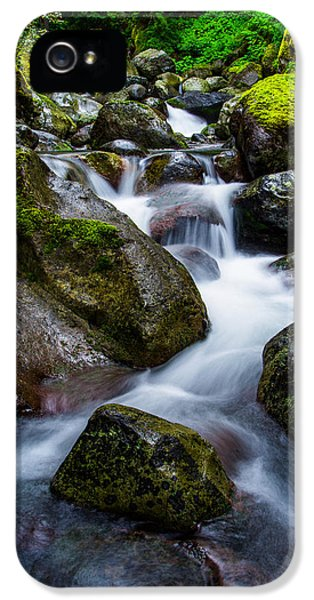 Below Rainier IPhone 5 / 5s Case by Chad Dutson