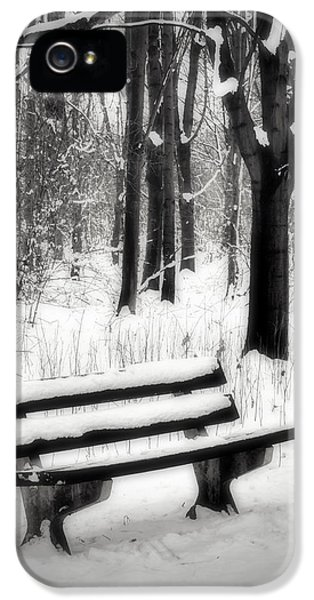 Environment Design iPhone 5 Cases - Bench in Snow iPhone 5 Case by Wim Lanclus