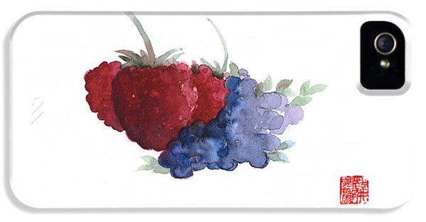 Berries Red Pink Black Blue Fruit Blueberry Blueberries Raspberry Raspberries Fruits Watercolors  IPhone 5 / 5s Case by Johana Szmerdt