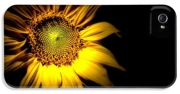 Dreamscape iPhone 5 Cases - Between Here And There iPhone 5 Case by Bob Orsillo