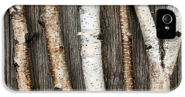 Knot iPhone 5 Cases - Birch trunks iPhone 5 Case by Elena Elisseeva