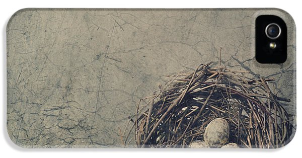 Grunge Style iPhone 5 Cases - Bird Nest iPhone 5 Case by Jelena Jovanovic
