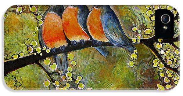 Three iPhone 5 Cases - Three Little Robin Birds iPhone 5 Case by Blenda Studio