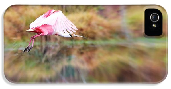 Birds Eye View IPhone 5 / 5s Case by Carol Groenen