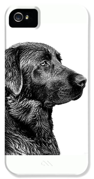 Hunting iPhone 5 Cases - Black Labrador Retriever Dog Monochrome iPhone 5 Case by Jennie Marie Schell