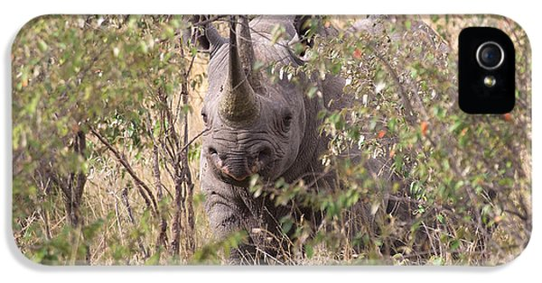 Black Rhino  IPhone 5 / 5s Case by Chris Scroggins