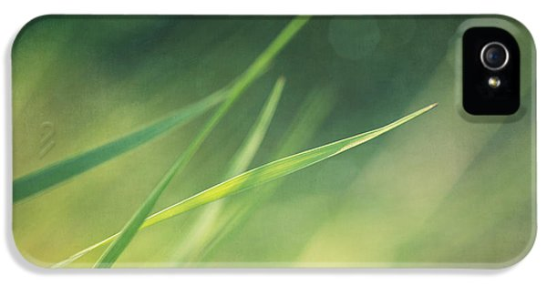 Landscape Format iPhone 5 Cases - Blades Of Grass Bathing In The Sun iPhone 5 Case by Priska Wettstein