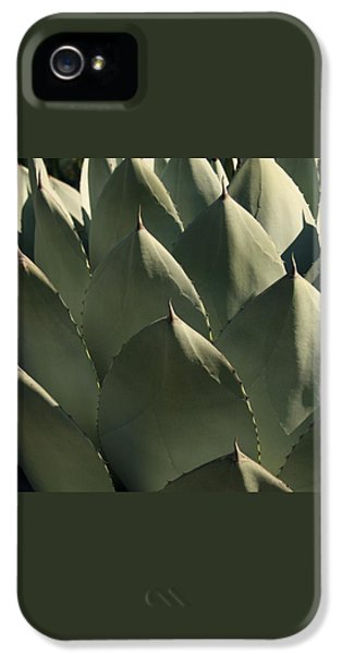 Blue Aloe IPhone 5 / 5s Case by Ellen Henneke