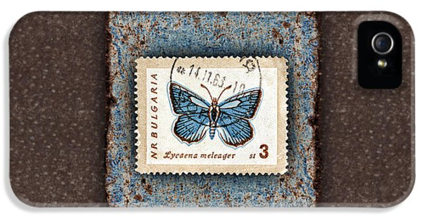 Montage iPhone 5 Cases - Blue Butterfly on Copper iPhone 5 Case by Carol Leigh