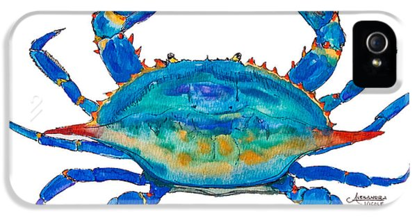 Crab iPhone 5 Cases - Blue Crab iPhone 5 Case by Alexandra Nicole Newton