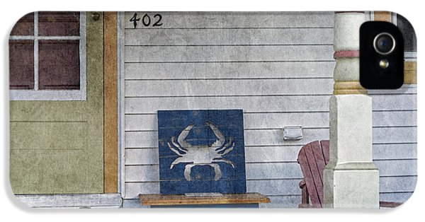 House Md Art iPhone 5 Cases - Blue Crab Chair iPhone 5 Case by Brian Wallace