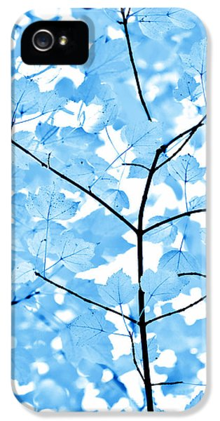 Blue Tree iPhone 5 Cases - Blue Leaves Melody iPhone 5 Case by Jennie Marie Schell