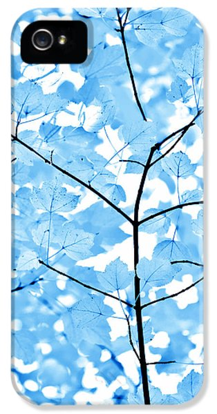 Blue Leaf iPhone 5 Cases - Blue Leaves Melody iPhone 5 Case by Jennie Marie Schell