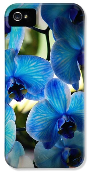Blue Monday IPhone 5 / 5s Case by Mandy Shupp