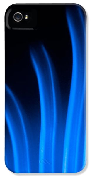 X-ray iPhone 5 Cases - Blue Palm iPhone 5 Case by Darryl Dalton