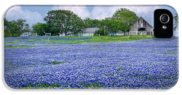 Bluebonnets iPhone 5 Cases - Bluebonnet Farm iPhone 5 Case by David and Carol Kelly