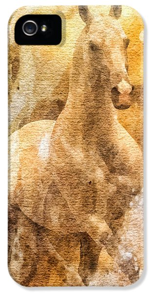 Born To Run iPhone 5 Cases - Born to be free iPhone 5 Case by Mo T