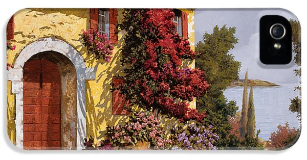 Romantic iPhone 5 Cases - Bouganville iPhone 5 Case by Guido Borelli