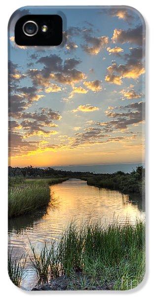 Bayou iPhone 5 Cases - Breaking Dawn along the Bayou iPhone 5 Case by Joan McCool