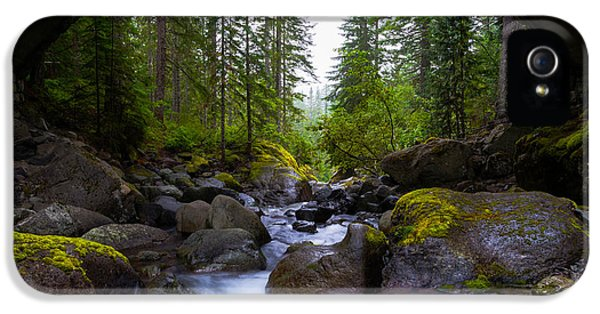 Pacific Northwest iPhone 5 Cases - Bridge Below Rainier iPhone 5 Case by Chad Dutson