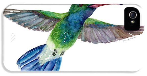Beak iPhone 5 Cases - BroadBilled Fan Tail Hummingbird iPhone 5 Case by Amy Kirkpatrick