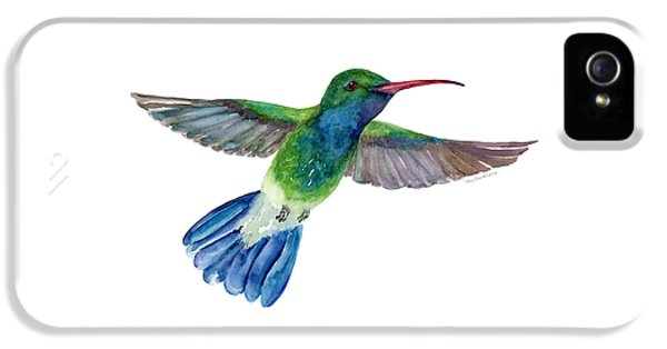 Broadbilled Fan Tail Hummingbird IPhone 5 / 5s Case by Amy Kirkpatrick