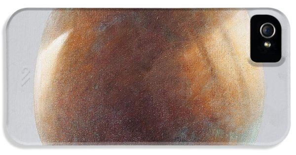 Bronze iPhone 5 Cases - Bronze Egg, 2014 Oil On Canvas iPhone 5 Case by Lincoln Seligman