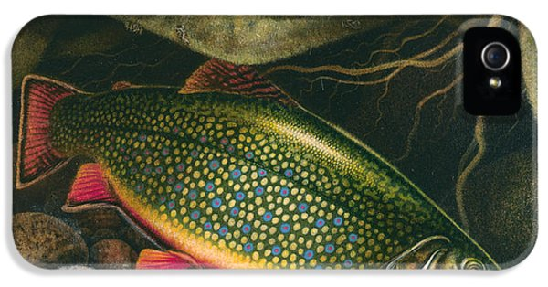 Brook Trout Lair IPhone 5 / 5s Case by JQ Licensing