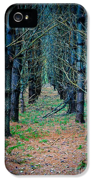 Brother iPhone 5 Cases - Brothers Grimm Forest iPhone 5 Case by Edward Fielding
