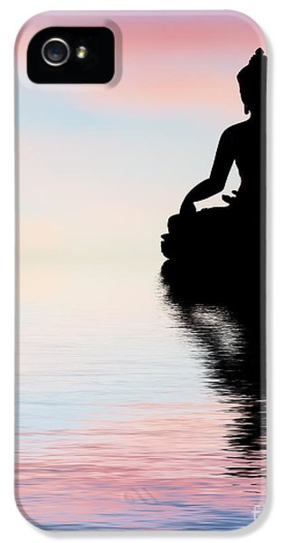 Beliefs iPhone 5 Cases - Buddha Reflection iPhone 5 Case by Tim Gainey