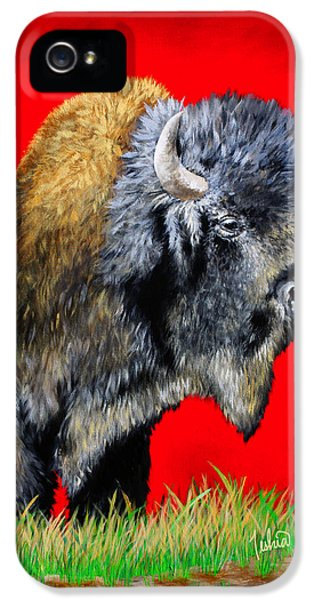 Native American iPhone 5 Cases - Buffalo Warrior iPhone 5 Case by Teshia Art