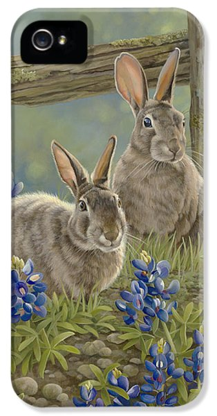 Jackrabbit iPhone 5 Cases - Bunnies and Bluebonnets iPhone 5 Case by Laura Regan