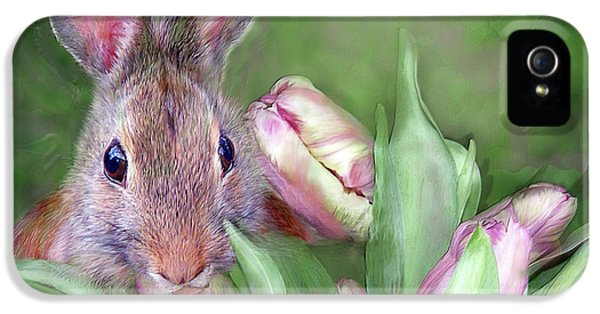 Bunny iPhone 5 Cases - Bunny In The Tulips iPhone 5 Case by Carol Cavalaris