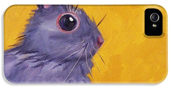 Bunny iPhone 5 Cases - Bunny iPhone 5 Case by Nancy Merkle
