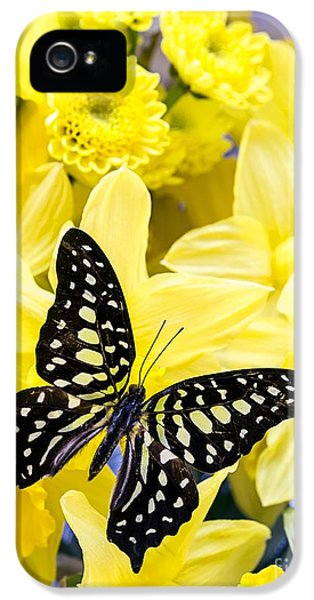 Butterfly Among The Daffodils IPhone 5 / 5s Case by Edward Fielding