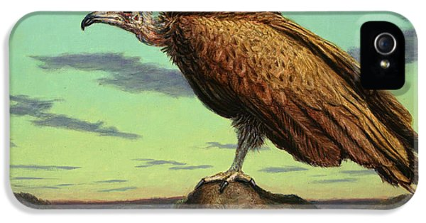 Buzzard Rock IPhone 5 / 5s Case by James W Johnson