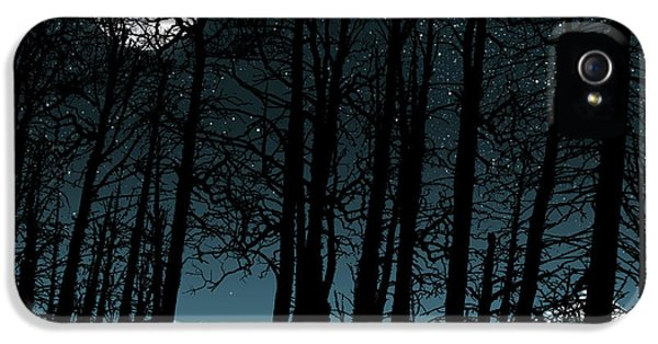 Fresas iPhone 5 Cases - By The Light Of The Moon iPhone 5 Case by Dancin Artworks