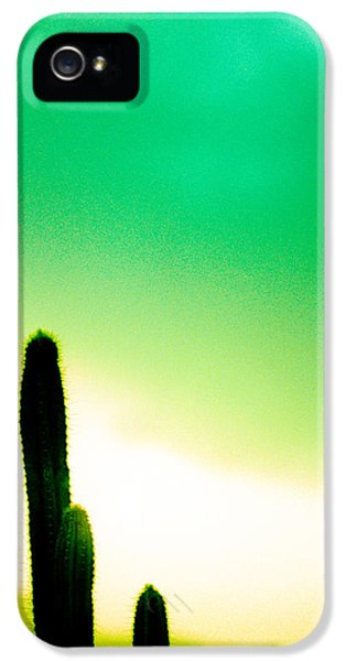 Hot Western iPhone 5 Cases - Cactus in the Morning iPhone 5 Case by Yo Pedro