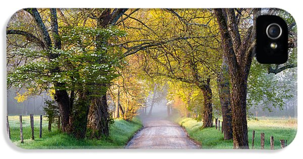 Road iPhone 5 Cases - Cades Cove Great Smoky Mountains National Park - Sparks Lane iPhone 5 Case by Dave Allen