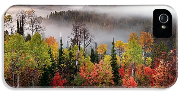 Caribou Canyon IPhone 5 / 5s Case by Leland D Howard