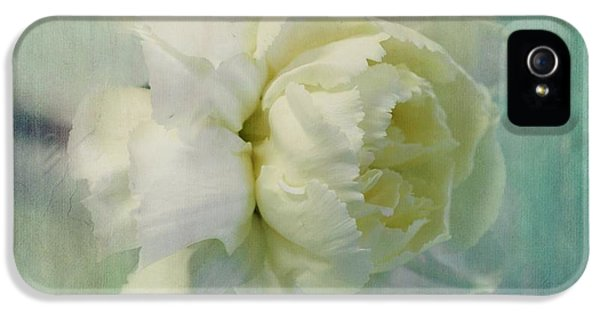 Carnations iPhone 5 Cases - Carnation iPhone 5 Case by Priska Wettstein