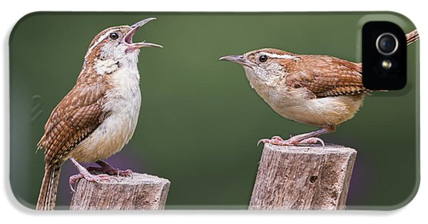 Carolina Wren Serenade IPhone 5 / 5s Case by Bonnie Barry