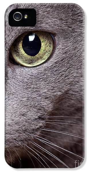 Playful iPhone 5 Cases - Cat Eye iPhone 5 Case by Nailia Schwarz